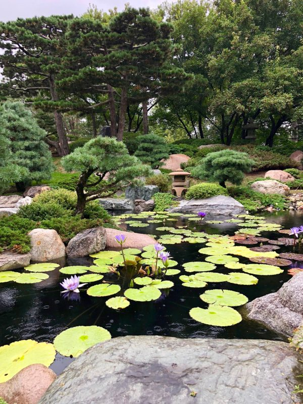 Ordway Japanese Garden