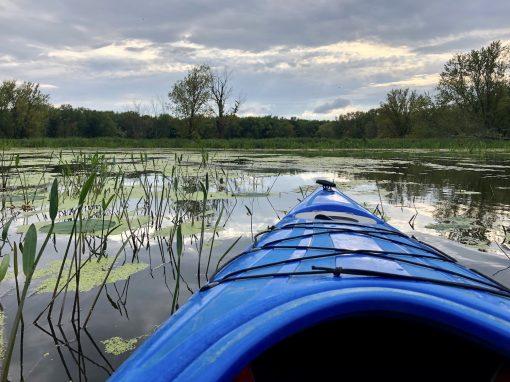 broken-paddle-guiding-1